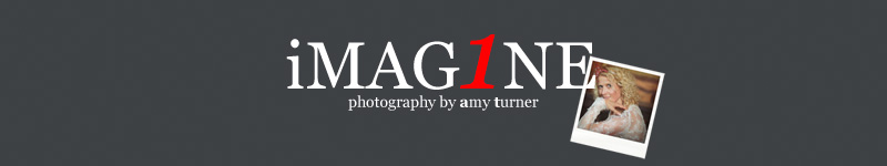 wedding photographer imag1ne logo